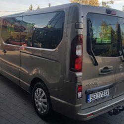 vivaro-zloty-7
